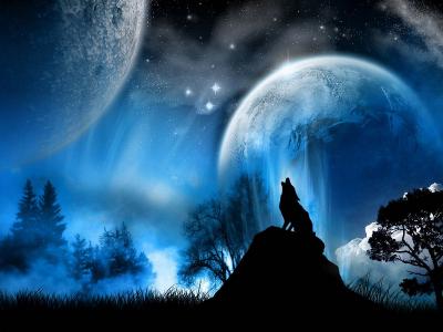 Lobo, de noche te encuentro aullando versos lejanos