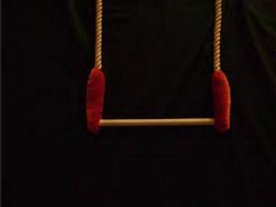 Murió el trapecista...