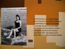 Lectura continuada de la poesía de Gloria Fuertes | Teatro Fernán Gómez. Centro Cultural de la Villa | 14/05/2017 | Video Pablo Rentería
